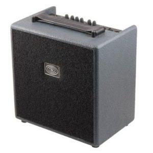 Amplificador-SCHERTLER-GIULIA.jpg