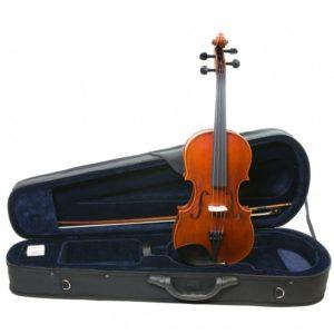 viola corina duetto
